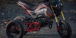 Industrial Moto LLC Project GUS Honda Grom Beiwagen
